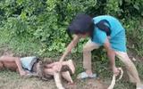 """Video: Rùng mình cảnh chị gái dùng em trai làm mồi nhử bắt trăn """"khủng"""""""