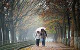 Dự báo thời tiết ngày 13/10: Miền Bắc tăng nhiệt, Hà Nội se lạnh vào đêm và sáng sớm
