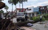 Đồng Nai: Mưa lớn kèm lốc xoáy khiến hàng loạt cây xanh, cột điện gãy đổ