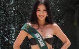 Tin tức - Nguyễn Phương Khánh đoạt huy chương Bạc phần thi bikini tại Miss Earth 2018