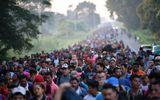 Ông Trump: Binh sĩ Mỹ có quyền nổ súng để đối phó với những người di cư quá khích