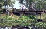 Thanh niên mặc áo GrabBike nghi bị sát hại, cướp tài sản ở Bình Chánh