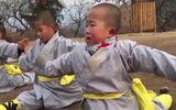 """Tin tức - Phát """"sốt"""" với màn múa võ ở Thiếu Lâm Tự của tiểu hòa thượng 3 tuổi"""