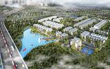 Kinh doanh - Bà Rịa – Vũng Tàu: Giá đất có thể tăng 20% trong năm 2019