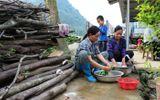Xã hội - Cao Bằng tổ chức hội nghị, tập huấn về vệ sinh và nước sạch nông thôn