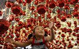 Tin thế giới - Không khí Giáng sinh tưng bừng khắp thế giới