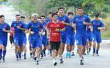 Hậu chia tay với tuyển Việt Nam, trợ lý ông Park Hang Seo sang Malaysia làm huấn luyện viên trưởng