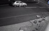 Video: Cảm động cảnh chú chó bị bỏ rơi vẫn cố gắng chạy theo xe của chủ