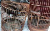 """""""Hiệp sĩ"""" Sài Gòn truy đuổi 2 tên trộm chim ở chung cư như phim hành động"""
