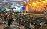 """Sau vụ 152 du khách Việt """"biến mất"""", Đài Loan ngừng chính sách visa Quan Hồng"""