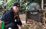 """Y tế - Hé lộ """"phương pháp luận trị"""" chữa bệnh xương khớp giúp người Việt thoát bại liệt"""