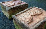 Tin tức - Hai tảng đá vứt lăn lóc ngoài vườn lại là báu vật khiến gia chủ hoảng hốt