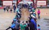 Kỳ lạ cuộc đua lợn đầu năm mới ở Trung Quốc