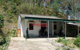 Diễn biến mới nhất vụ nữ sinh đi giao gà bị sát hại ở Điện Biên