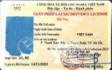 Mất giấy phép lái xe và hồ sơ gốc có được xét cấp lại?