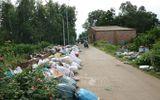 Xã hội - Những sai phạm liên quan dự án Nhà máy xử lý chất thải rắn sinh hoạt ở Quảng Ngãi