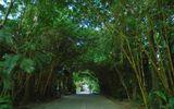 Maxport Limited Vietnam - doanh nghiệp tiên phong kiến tạo môi trường xanh cho người lao động