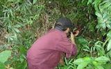 Núp trong bụi cây giả tiếng gà, nam thanh niên bị thợ săn bắn tử vong