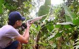 Pháp luật - Vụ nam thanh niên bị bắn chết vì giả tiếng gà rừng: Đối tượng gây án bị xử lý ra sao?