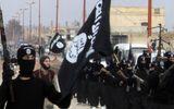 Liên quân Mỹ phóng thích gần 300 tay súng IS khỏi nhà tù Syria