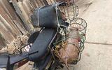 Tin tức đời sống ngày 11/3/2019:Phát hiện thêm ổ dịch tả lợn châu Phi ở Sóc Sơn