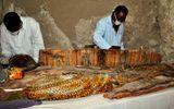 Tin thế giới - Ai Cập khai quật 8 xác ướp trong những ngôi mộ 3.500 năm tuổi