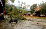 Tin trong nước - Nghệ An: Lốc xoáy kèm mưa đá, hơn 50 nhà dân bị tốc mái