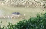 Tin trong nước - Tá hỏa phát hiện thi thể nam sinh nổi trên suối sau 3 ngày mất tích bí ẩn