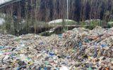 Tin trong nước - Hơn 300 xác thai nhi bị vứt ở nhà máy rác Cà Mau trong 7 năm