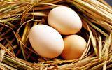 Ăn trứng gà thế nào thì tốt cho sức khỏe?