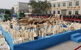 Trung Quốc tiêu hủy 6 tấn ngà voi trái phép