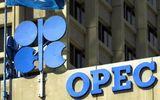 Giá dầu thô chạm đáy thấp nhất 3 năm