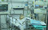 Một trẻ nghi bị mẹ tiêm thuốc diệt cỏ đã tử vong