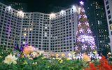Chiêm ngưỡng những cây thông Noel độc đáo nhất ở Hà Nội
