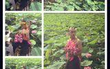 Nam giới mặc yếm e ấp chụp ảnh bên hồ sen gây tranh cãi