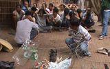 Gần 100 trinh sát tham gia phá trường gà, tạm giữ 53 con bạc