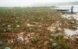 Mưa lũ bất thường ở Quảng Nam: Bé trai chết đuối thương tâm khi vớt dưa hấu
