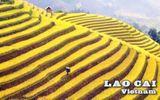 Lào Cai là một trong 10 danh thắng đẹp nhất thế giới