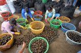Ẩm thực - Những chợ đặc biệt chỉ có trong mùa lũ