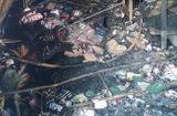 Sự kiện hàng ngày - Cà Mau: Cháy thiêu rụi 4 căn nhà liền kề, nạn nhân nhảy từ tầng 2 xuống