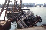 Tin trong nước - Quảng Ninh: Đâm hỏng tàu du lịch, tàu chở khách tăng tốc bỏ chạy