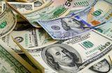 Tư vấn tiêu dùng - Tỷ giá USD ngày 24/1: Đồng USD tiếp tục giảm giá