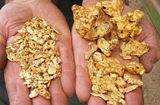 Tư vấn tiêu dùng - Giá vàng hôm nay 28/1: Giảm giá trong ngày đầu năm Đinh Dậu
