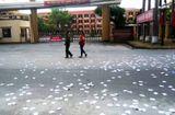 Tin trong nước - Thái Bình: Tạm giữ nam thanh niên lạ mặt rải phao thi trước cổng trường
