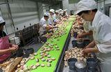 Thị trường - Khó tuyển công nhân tại ngôi làng giàu nhất Nhật Bản
