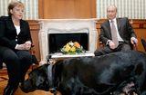 Tin thế giới - Điện Kremlin: Tổng thống Nga Putin bị tạp chí Đức xúc phạm nặng nề