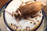 """Ăn - Chơi - Thấy """"gián"""" đậu trên cốc cà phê, khách hàng thích thú"""