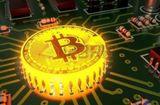 Tin tức - Giá Bitcoin hôm nay 5/1: Bitcoin ổn định, đồng Ripple tăng cực sốc
