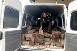 Tin tức - Ô tô chở gỗ lậu đâm thẳng vào xe của đội kiểm lâm để bỏ trốn