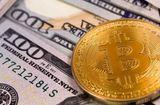 Tin tức - Giá Bitcoin hôm nay 31/1: Tụt thêm 1.300 USD, Bitcoin sắp mất ngưỡng 10.000 USD